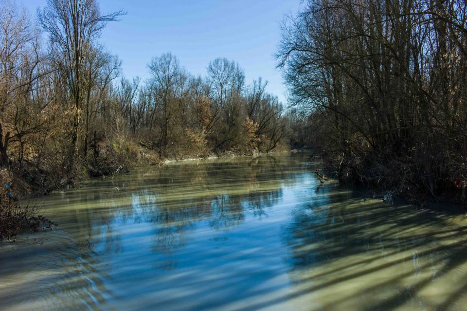 Il fiume Reno, febbraio 2016
