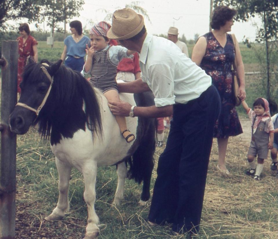 Nido Peter Pan, al maneggio, 1978