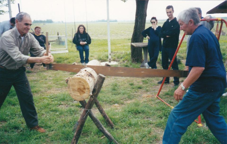 Taglio della legna, aprile 2001